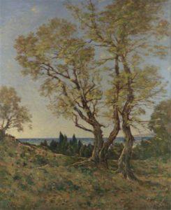 1428780929_olive-trees-at-menton.jpg