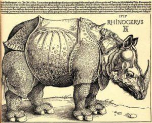 1428790246_rhinoceros.jpg