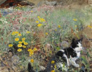 1428795007_cat-in-field-of-flowers.jpg
