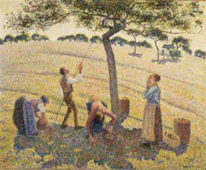 1428798942_apple-harvest.jpg