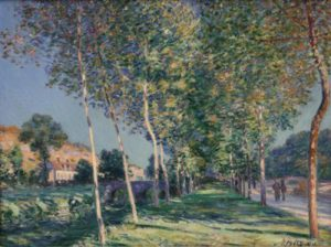 1428802784_alley-of-poplars-in-the-outskirts-of-mor.jpg