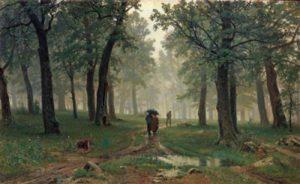 1428807140_rain-in-a-oak-forest-dozhd-v-dub.jpg