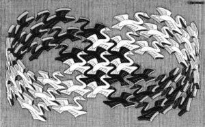 1428807677_swans-lebedi.jpg