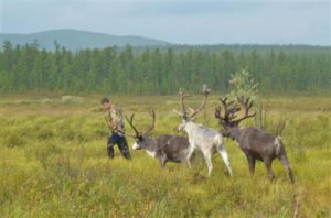 1429113173_boy-with-deers-malchik-s-olenyami.jpg