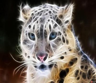 1429113531_ognennyy-leopard.jpg